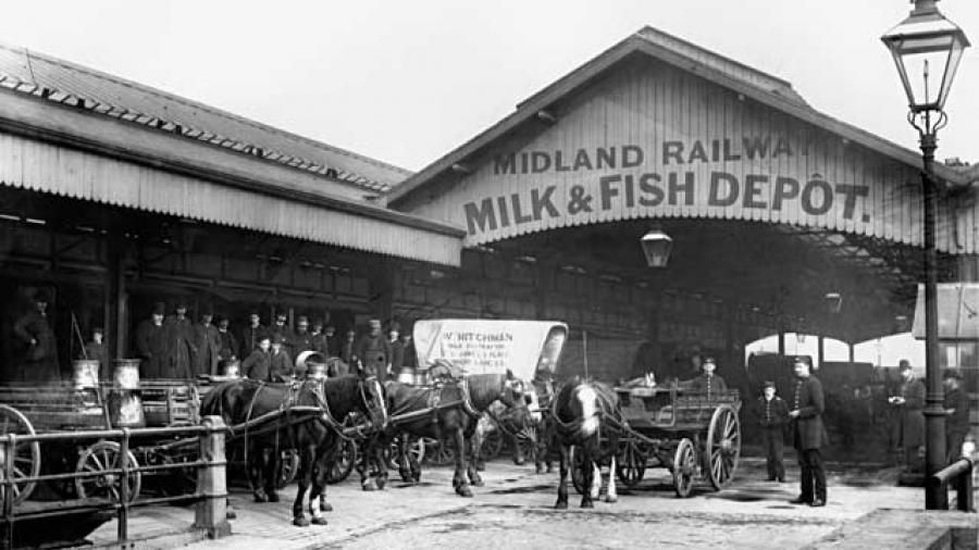 A view of the Milk and Fish depot, c1894, showing horses and carts used for collection and delivery.
