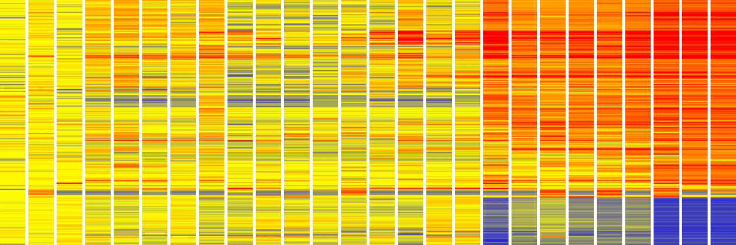 Heatmap showing gene activity increasing and decreasing over time in mice infected with the bacterium that causes tuberculosis.