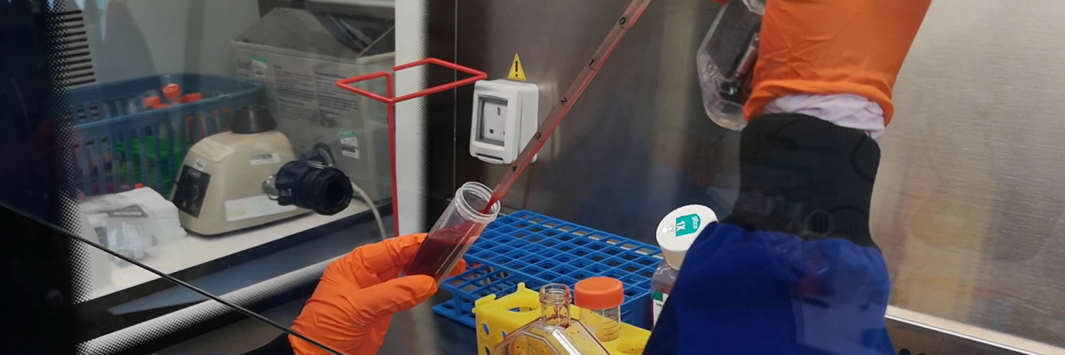 Hands pipetting blood into a flask