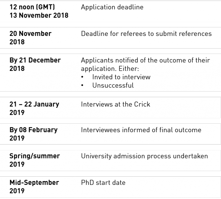 PhD student recruitment timeline