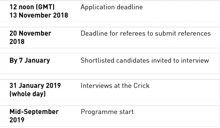 Doctoral clinical fellows recruitment timeline