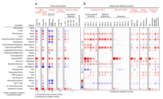 Modular gene transcription signatures of TB and other diseases