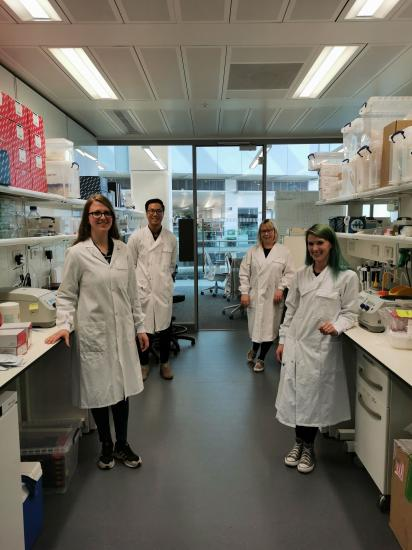 Samra Turajlic's lab team investigating the immune response to SARS-CoV-2 coronavirus in cancer patients as part of the CAPTURE study. Left to right: Antonia Toncheva, Lewis Au, Fiona Byrne, and Annika Fendler.