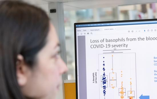 Researcher looking at a screen with results about basophil levels in COVID-19 patients.